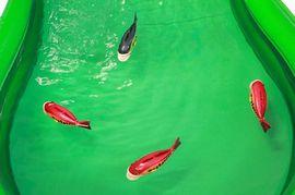 10re_魚釣り②.jpg