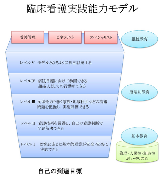 臨床看護実践能力モデル